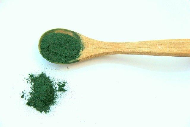 manger-végétarien-sans-carence-protéines-fer-vitamine-B12-spiruline