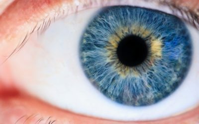 L'iridologie : Qu'est-ce que c'est ?