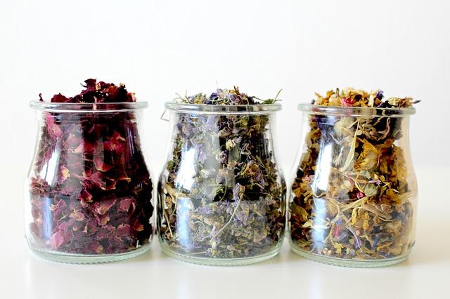 plantes-nettoyer-intestin-purifier-intestin-naturellement-naturopathie