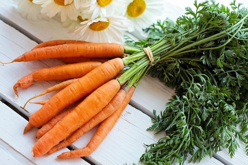 bêta carotènes antioxydant pour la peau pour prolonger son bronzage naturellement