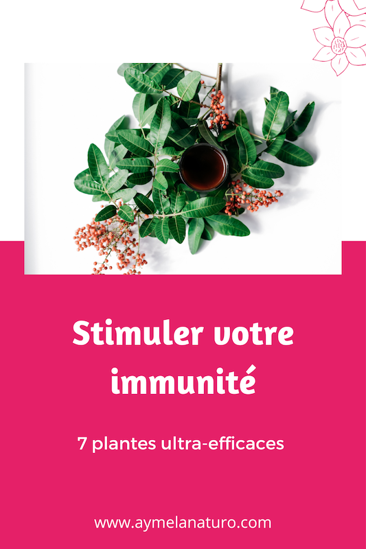 plantes stimuler système immunitaire booster défenses naturelles naturopathie