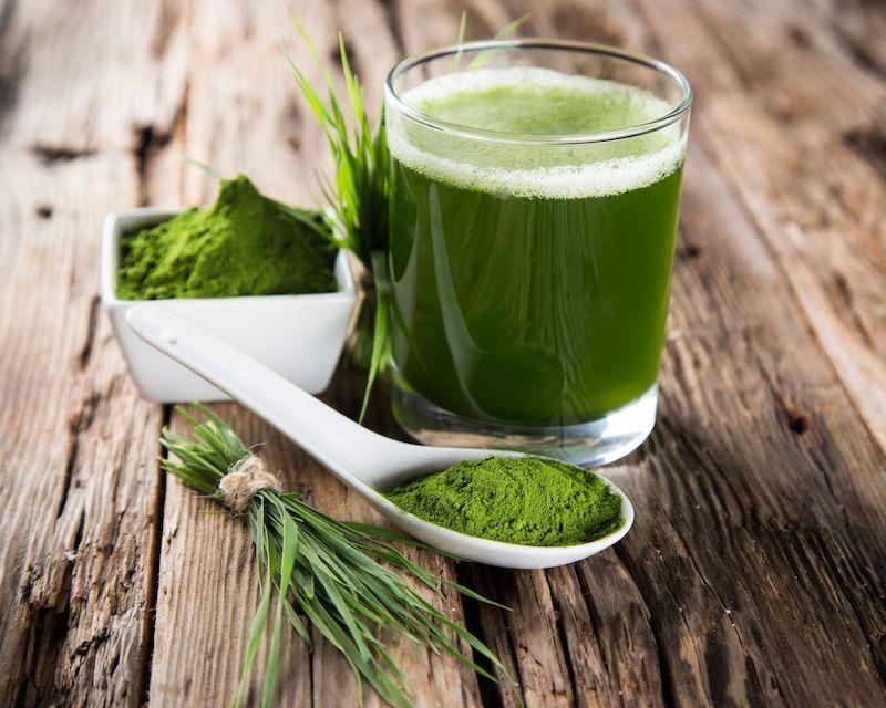 herbe de blé poudre bienfaits poudre orge comment utiliser manger