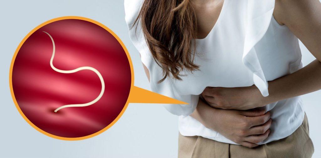 vers parasites intestins parasitoses digestives definition remedes naturels sympotmes