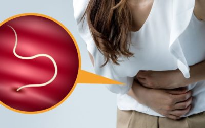 Vers intestinaux et parasitoses digestives : la cause de tous vos soucis ?