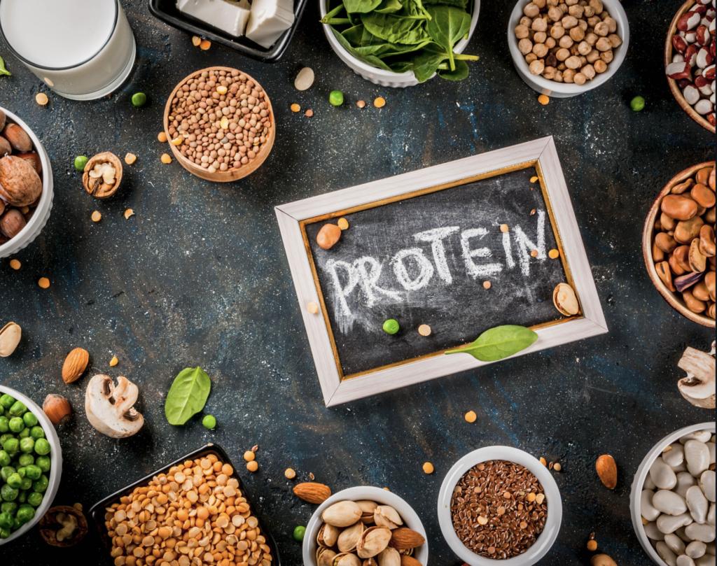 carence en protéines animales végétales alimentation métabolisme